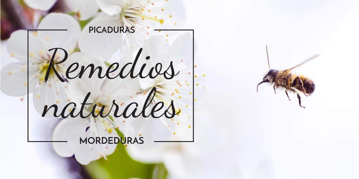 REMEDIOS NATURALES CONTRA PICADURAS/MORDEDURAS