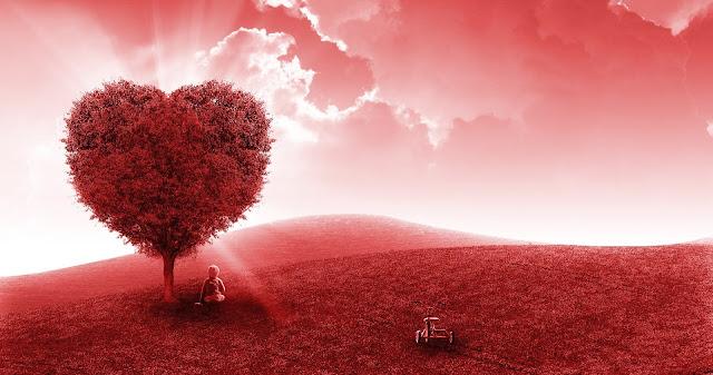 صورة شجرة علي شكل قلب