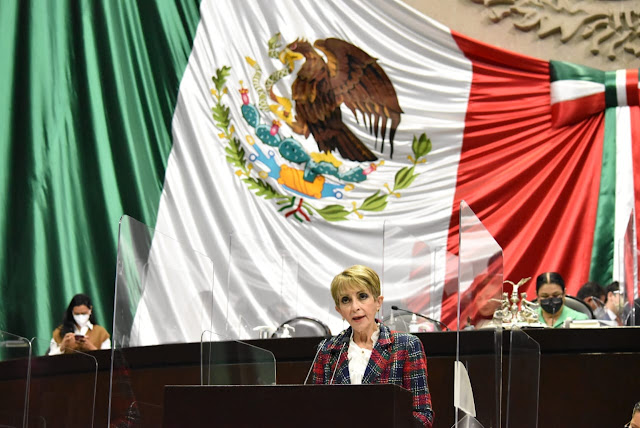 María Ester Alonzo afirma que reforma a Ley de la Industria Eléctrica va en contra de la Constitución