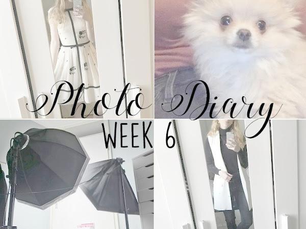 Photo Diary Week 6