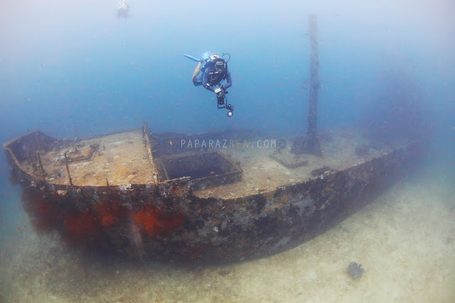 Scuba diving Philippines, Underwater Photography Philippines, Dive Philipines, PaparazSea