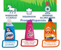 Logo Sole, Vanish e Calgon ti regalano voucher esperienze a scelta come regalo sicuro