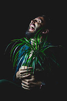 A man with a dark beard hugging a potted plant and laughing with his head thrown backPhoto by Jason Edwards on Unsplash..