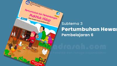 Kunci Jawaban Tema 1 Kelas 3 SD Halaman 137 138 139 dan 141 Subtema 3 Pembelajaran 6