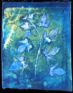 Wet Cyanotype_Sue Reno_Image 66