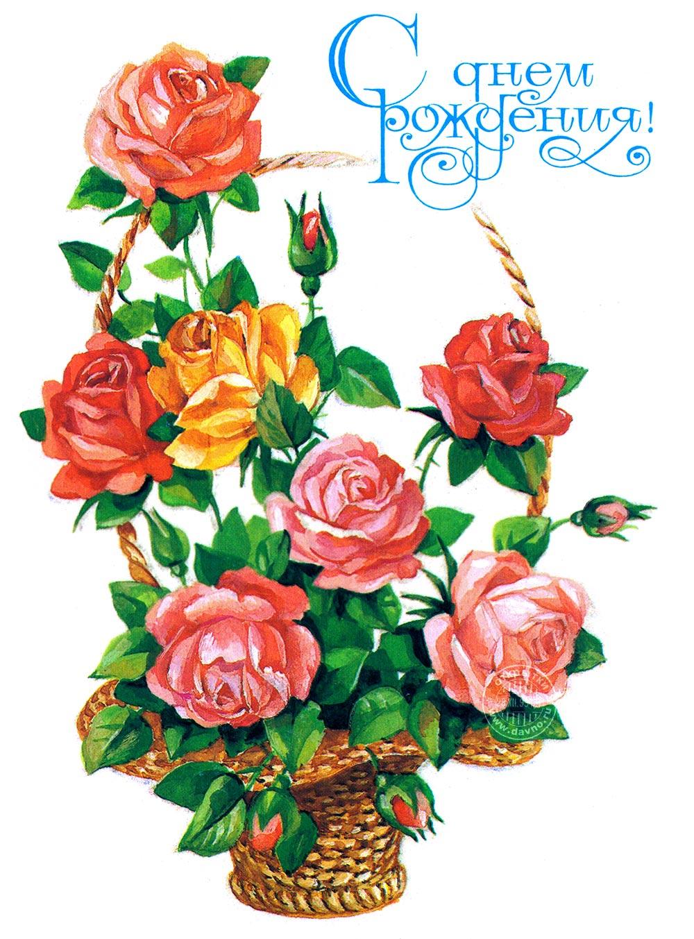 Нежные пастельных цветов бутоны роз и красивая подпись — открытка ...