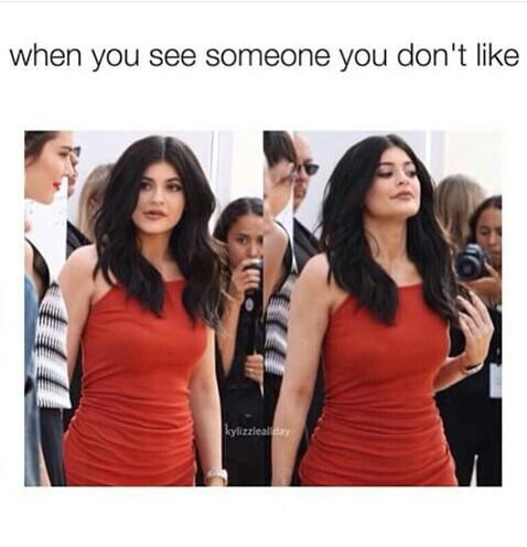 Most Fun-Loving Kylie Jenner Memes (40 Photos)