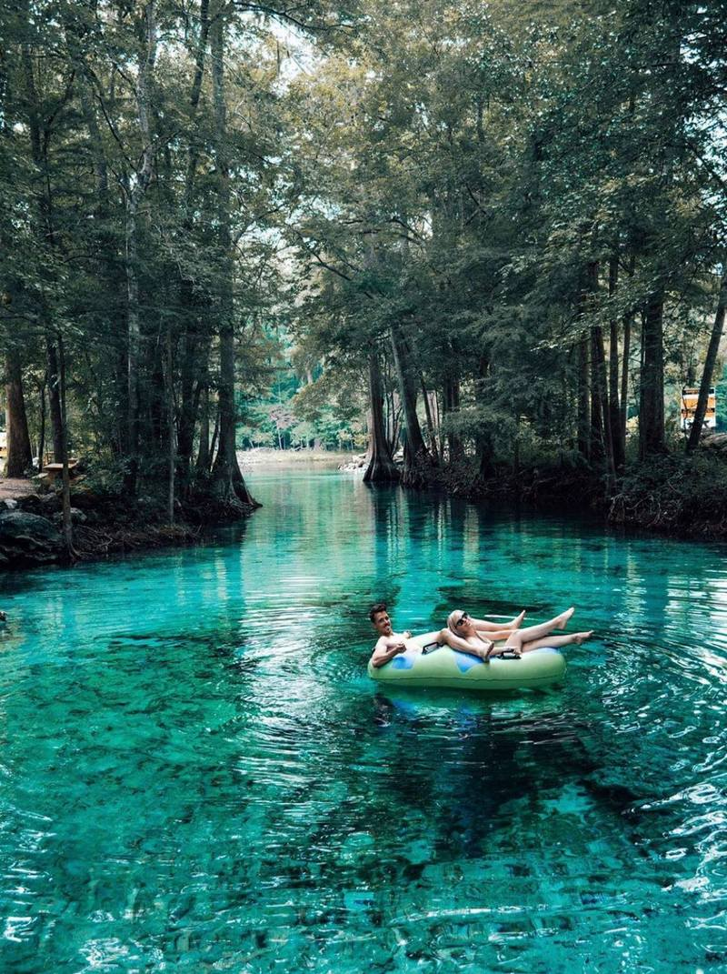 ginnie springs; ginnie springs fl; ginnie springs florida; ginnie pig; ginnie; ginnie spring; ginnie springs in florida; ginnie springs camping; ginnie spring florida; ginnie springs state park; scuba diving ginnie springs; ginnie springs park; diving ginnie springs; high springs fl ginnie springs; ginnie springs river; ginnie pigs; camping near ginnie springs; ginnie springs address; ginnie springs campsites; tubing springs in florida; santa fe river tubing; camping ginnie springs; florida springs tubing; ginnie springs dive; high springs florida camping; how deep is ginnie springs; ginnie springs cave diving;