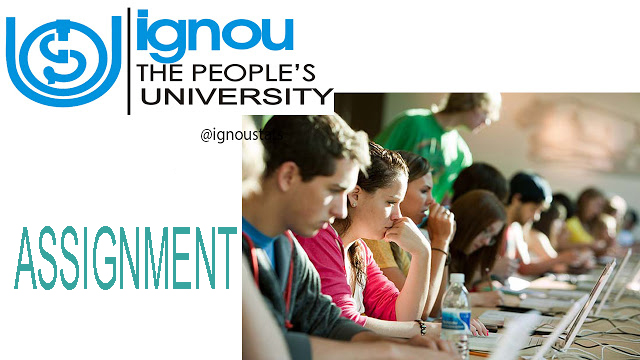 buy university assignments online All university assignments is the complete portal to help the university of phoenix students and ashford university for all type of homework assignments.