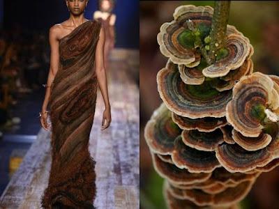 Modern Art With Mushroom