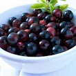 Tips for Safe Eating Acai Berry Pregnancy