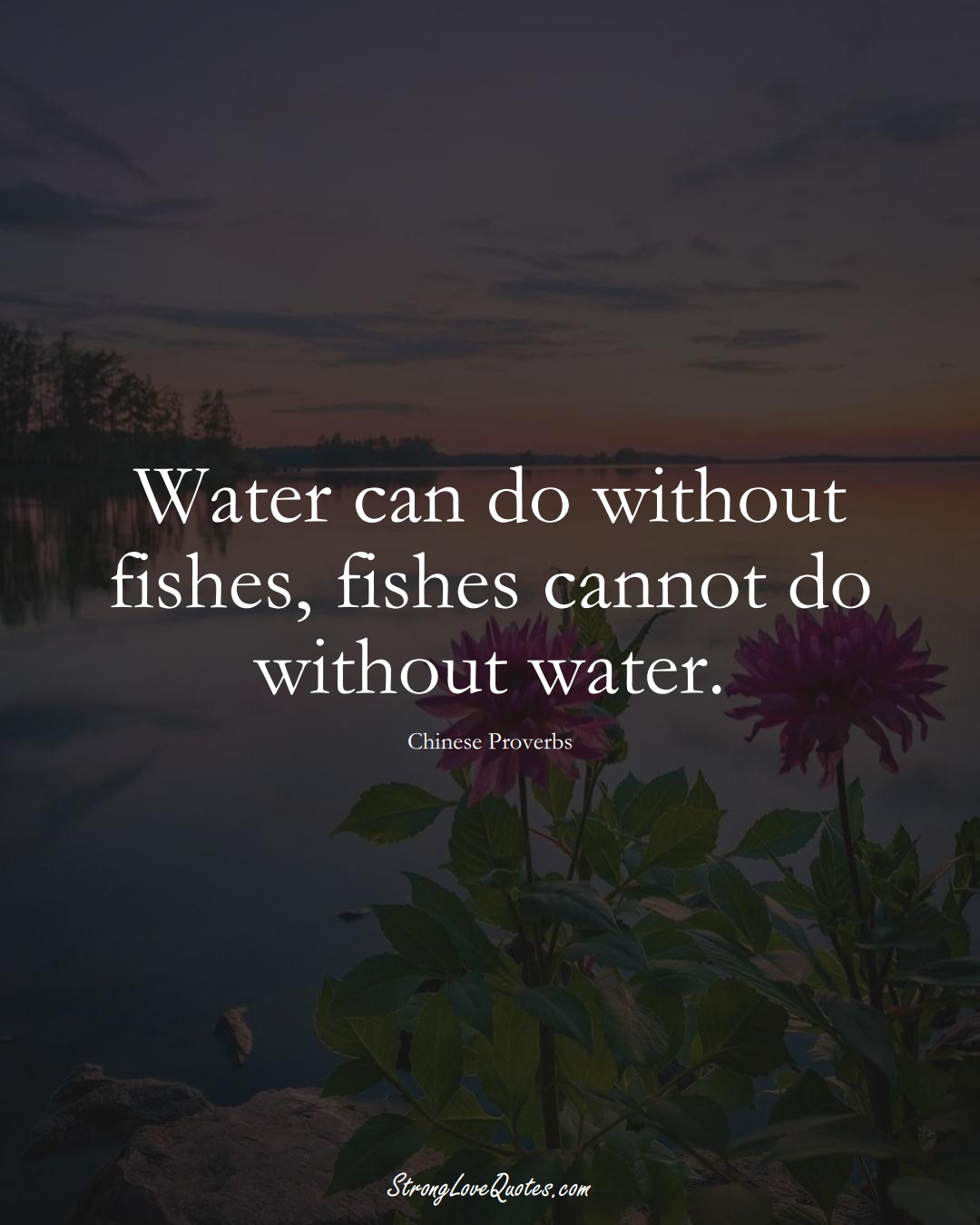 Water can do without fishes, fishes cannot do without water. (Chinese Sayings);  #AsianSayings