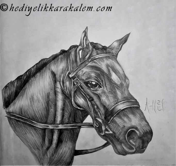 KARAKALEM PORTRE FİYATLARI BLACK HORSE HEDİYELİK KARAKALEM