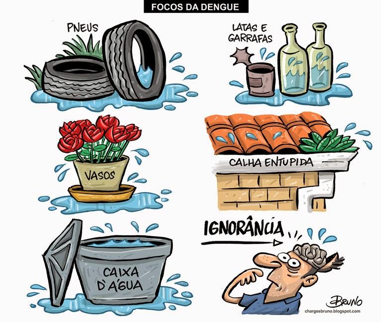 Webquest Todos Contra A Dengue