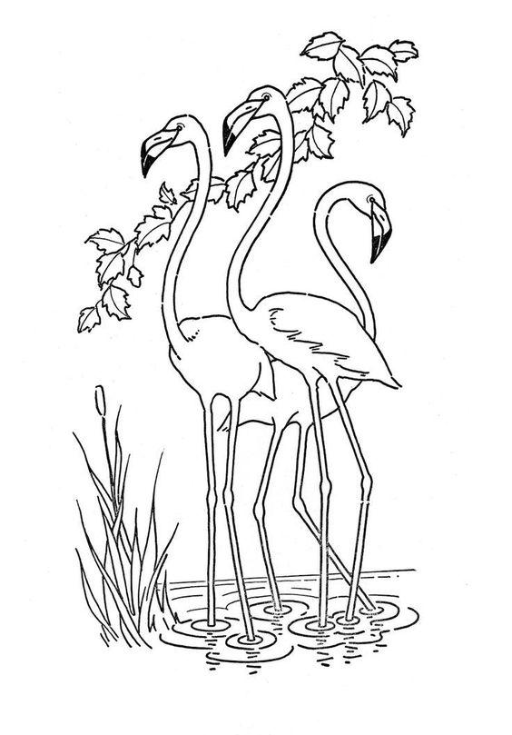 Tranh tô màu ba con chim hạc