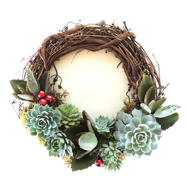 DIY, Succulents, Christmas, crafts, decor, seasonal, holiday crafts, holidays, wreath, DIY wreath, succulent wreath