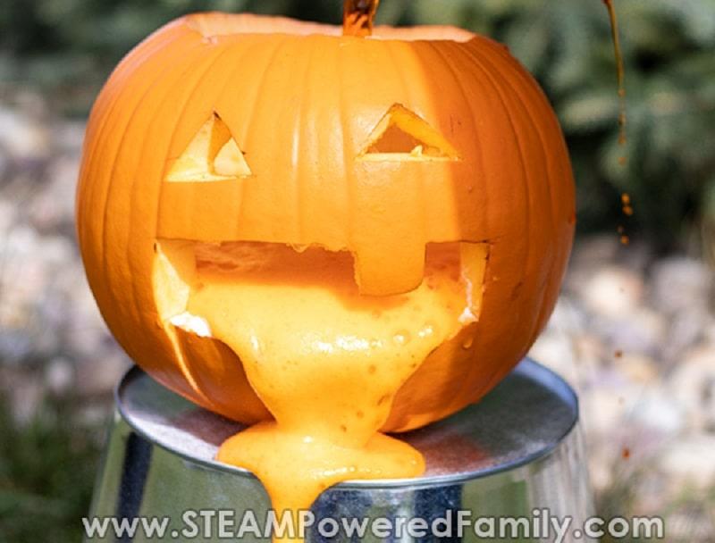 puking pumpkin experiment