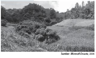 Pengertian Tanah dan Lahan