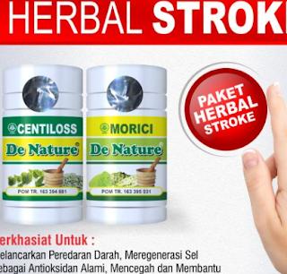 Obat Buat Stroke Ringan