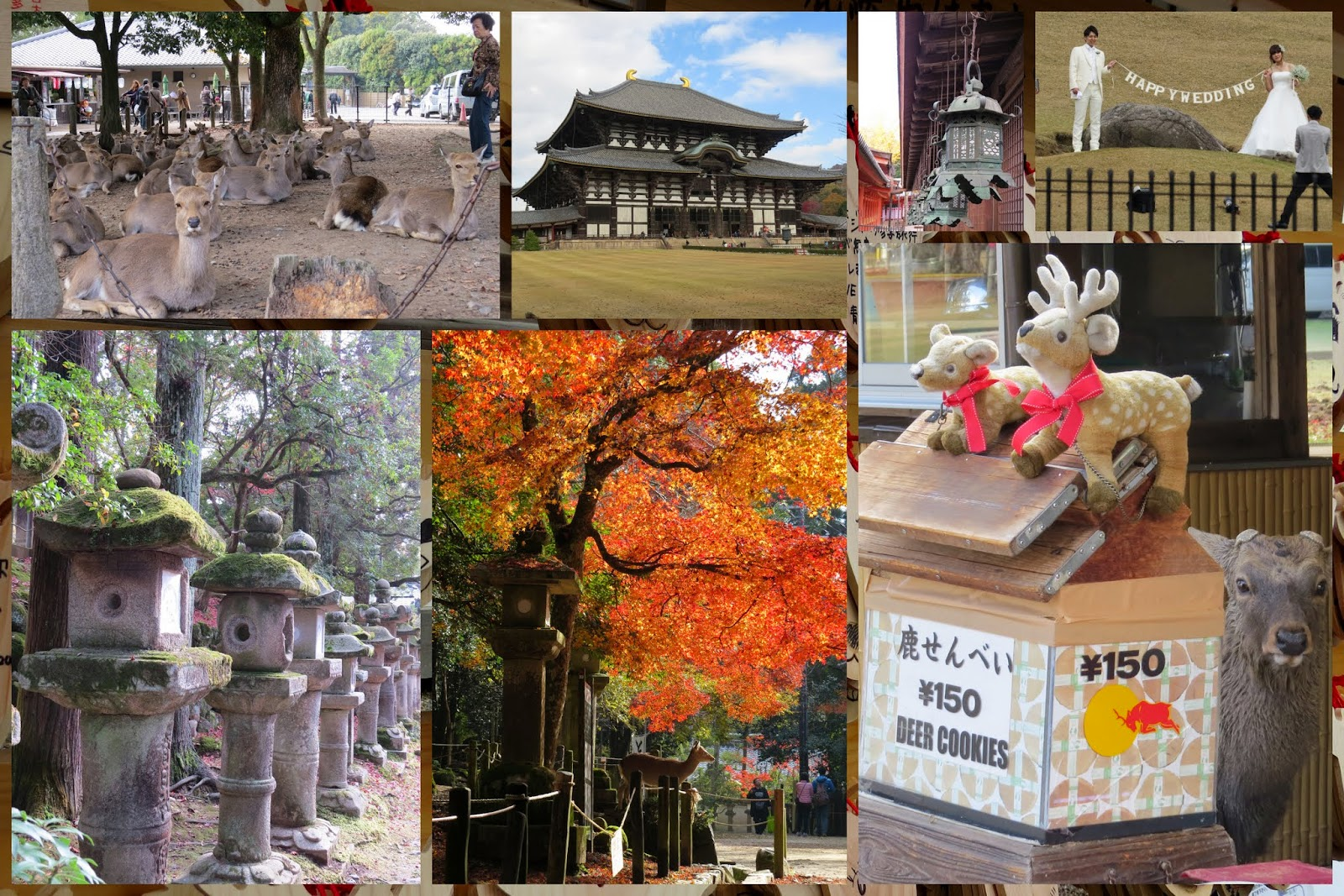 Scenes from Nara, Japan