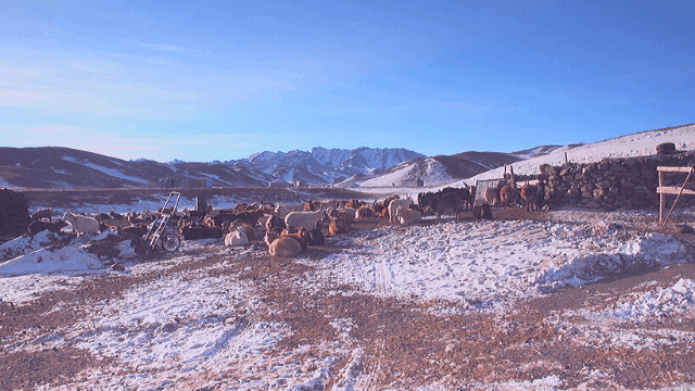 Best Places To visit in Mongolia and Tourist Attractions.Yolyn Am Valley.
