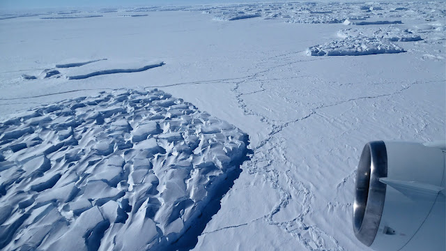 Methane-eating microbes may reduce release of gases as Antarctic ice sheets melt