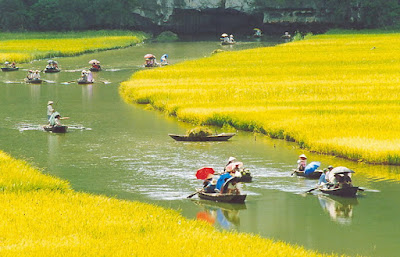 Thời điểm thích hợp đến Tam Cốc _ Ninh Bình _ Việt Nam ?