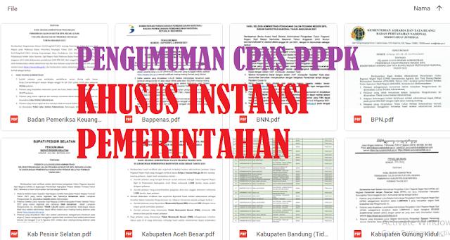New Lanjutan Pengumuman CPNS PPPK Beberapa Formasi Khusus Instansi Pemerintahan Daerah