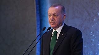 أردوغان: فرنسا لا تجد وقتًا لحل مشاكلها الداخلية بسبب تدخلاتها الخارجية