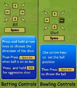 Online Cricket Game Control Picture