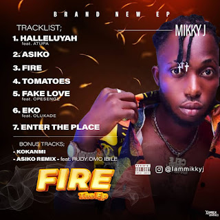 ALBUM/EP : MIKKY J - FIRE THE EP