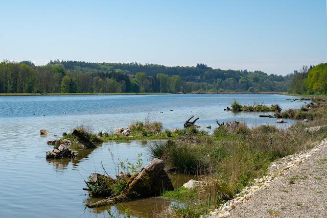 Premiumwanderweg DonAUwald | Etappe 1 von Günzburg nach Offingen 22