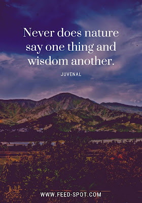 Never does nature say one thing and wisdom another. __ Juvenal