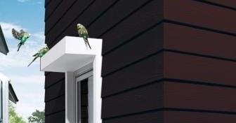 Conwood Material Inovatif Pengganti Kayu Desain Rumah