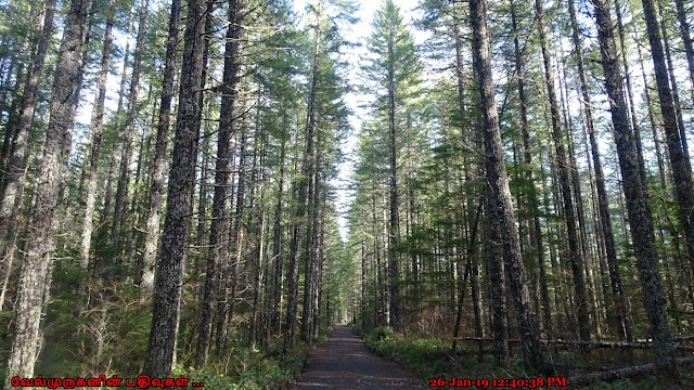 National Forest Road NF057