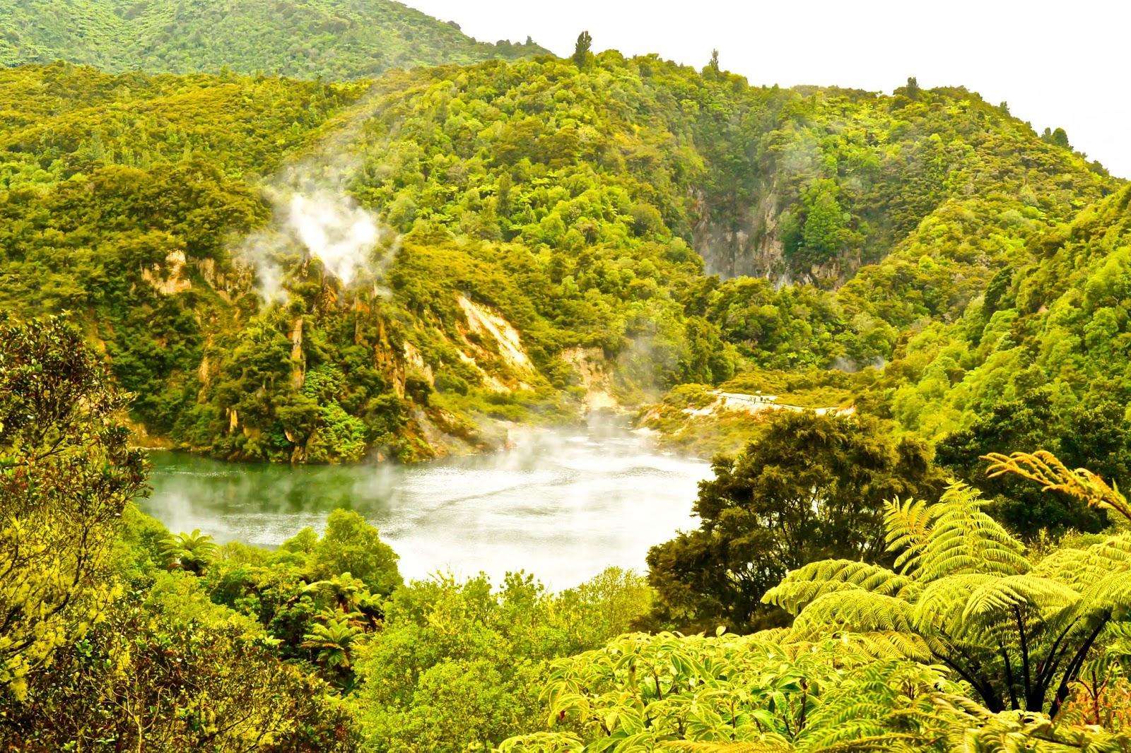 Things to do in Rotorua New Zealand : Geothermal activity at Waimangu Thermal Valley