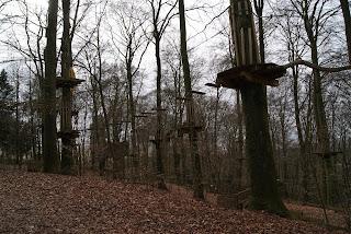 Mehrere Plattformen sind an Baumstämmen angebracht und über verschiedene Seilbrücken miteinander verbunden