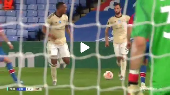 VIDEO: Crystal Palace 0:2 Manchester United / Premier league,