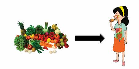 "Materi Kelas 5 SD/MI Bahasa Inggris ""How Does the Body Treats Food"""