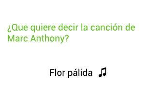 Significado de la canción Flor Pálida Marc Anthony.