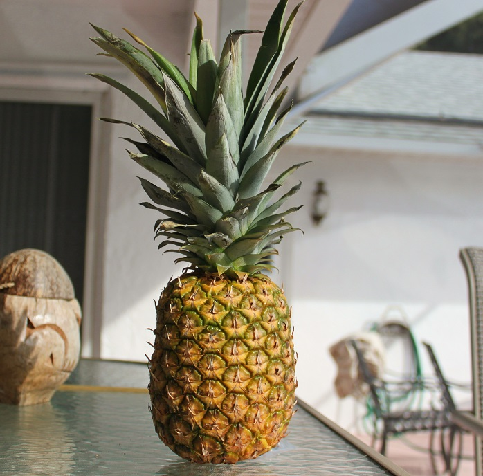 this is a whole fresh pineapple sitting outside on a bar