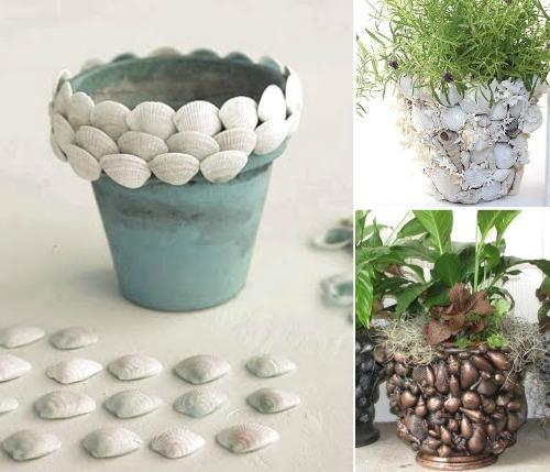 Terra Cotta Seashell Pots