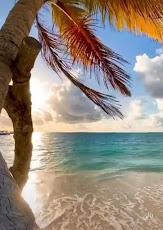 جزيرة بالي، جزر بالي، أجمل جزيرة في العالم