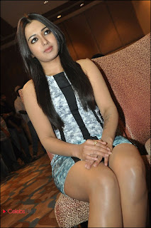 Catherine Tresa Pos at Iddarammayilatho Platinum Disc Function  0005.jpg