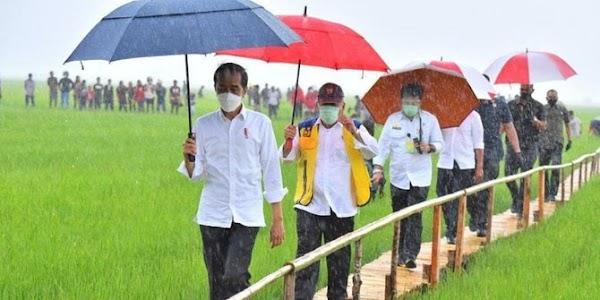 Kunker Jokowi Bikin Kerumunan Warga, PAN Nilai Tak Sesuai Kampanye Prokes Pemerintah