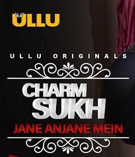 Charmsukh (Jane Anjane Mein) S01 Complete Download 720p WEBRip