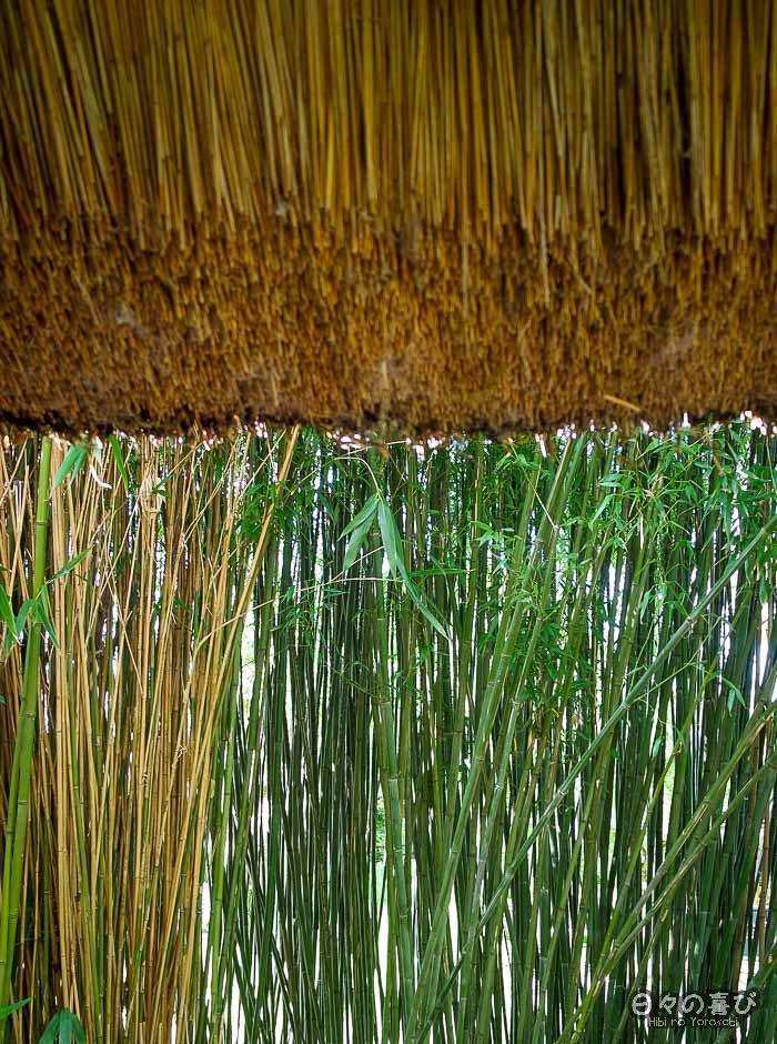 jardin japonais musica nigella, contraste bambou et toit de chaume