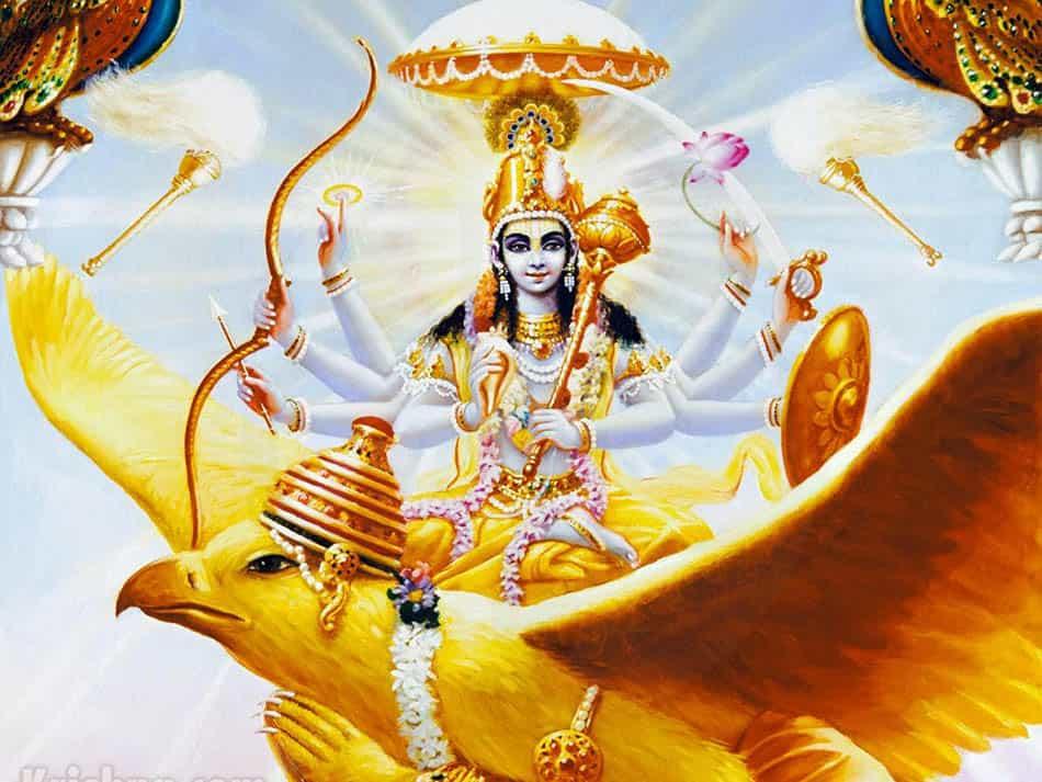 A, mitoloji, Hint mitolojisi, Budizm, Hinduizm, Amrita, Garuda, Tanrı Garuda, Tanrıların bineği, Vişnu'nun bineği, Hint efsaneleri, Vinata, Kashyapa, Nagalar, Anzu, Zu, Mahabharata,