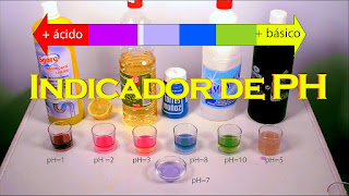 https://descubrirlaquimica2.blogspot.com/2019/08/col-lombarda-indicador-natural-del-ph.html