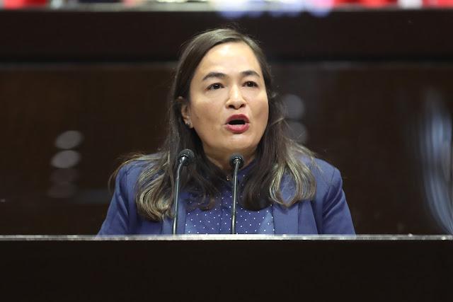 coordinadora del Grupo Parlamentario del PRD, Verónica Juárez Piña